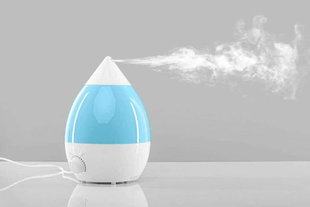 The Best Humidifier for Sinus Problems